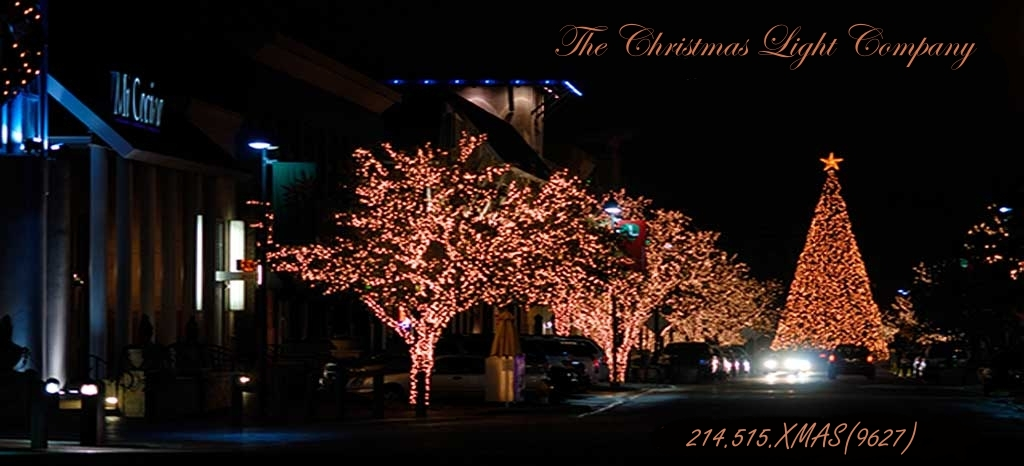 welcome to the premier christmas lighting service and sales company